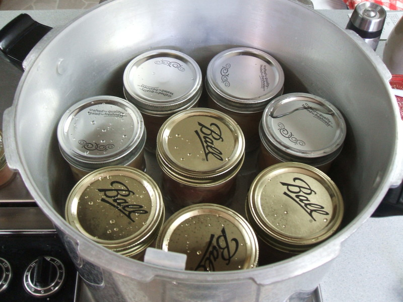 jars in canner