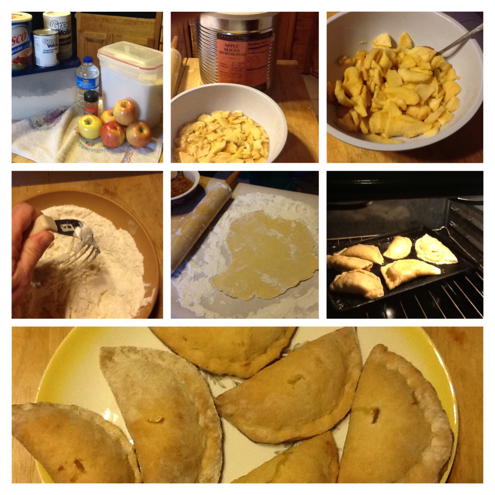 Herron,Paula_Granny's Fried Apple Pies_0215